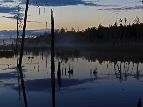 Ambiance paysage finlandais carelie