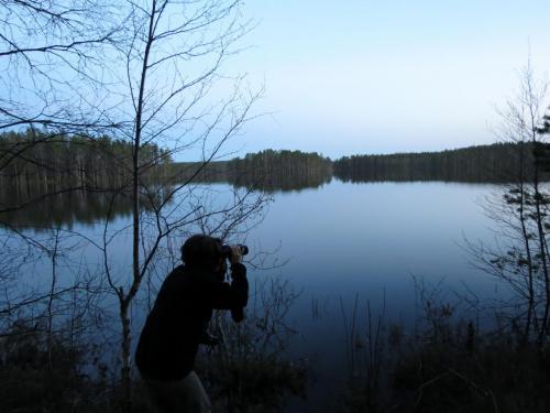 PAu bord du lac