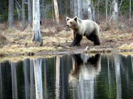 finlande-mai-2012-972.jpg