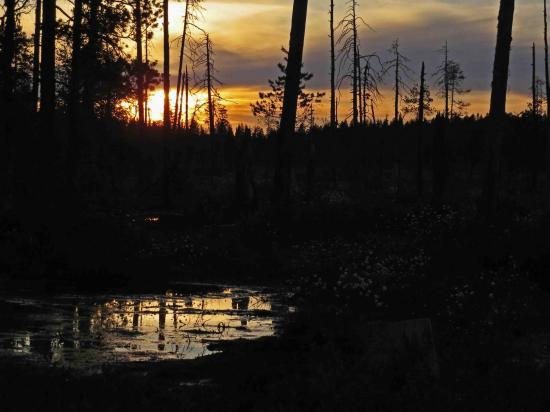 Sous le soleil de minuit finlande