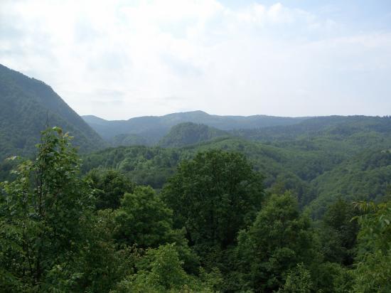La montagne aux ours...