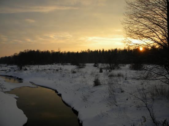 Rivière travressant la grande sylve, Bialowieza