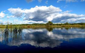 estonie-septembre-2012-468.jpg
